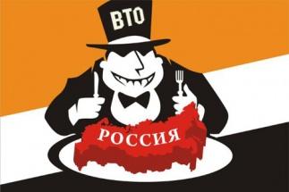 Куда ВТОлкнули российскую экономику