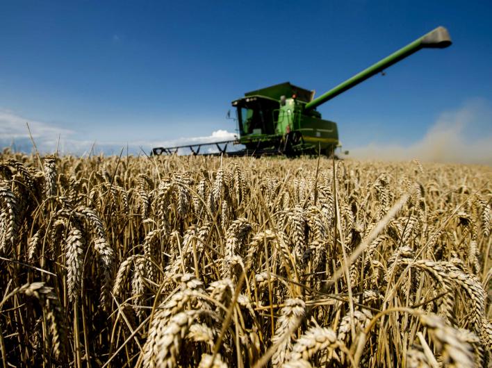Украинских фермеров поставили в безвыходное положение перед посевной