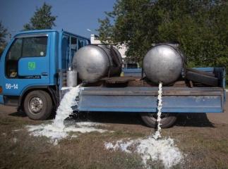 Амурский фермер слил в канаву более тонны молока
