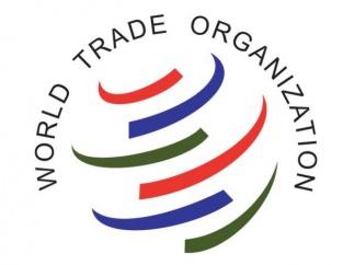 Какие опасности несёт вступление России в ВТО?